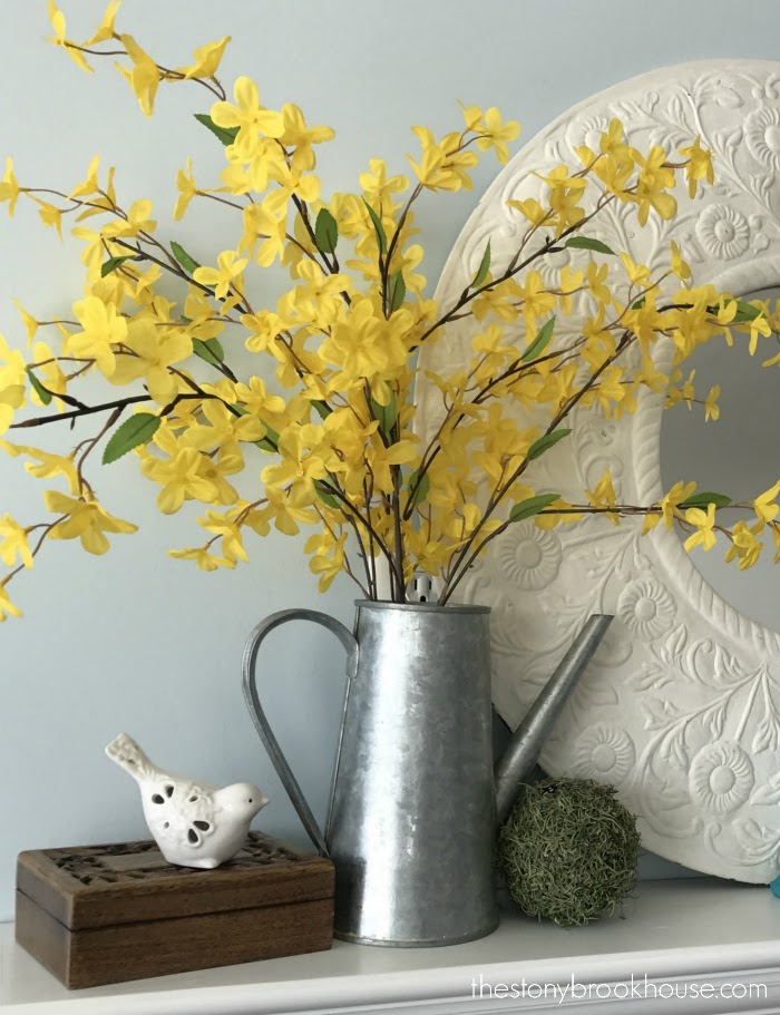 Forsythia and Galvanized Pitcher