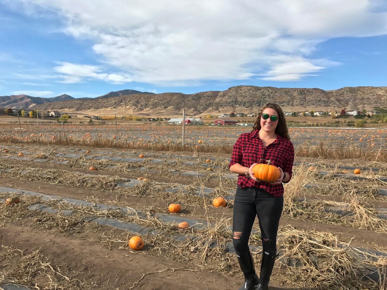 The Colorado Gal: October 2016