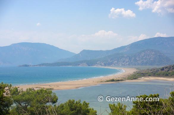İztuzu plajının bir tarafı tuzlu deniz suyui diğer tarafı tatlı su, Dalyan