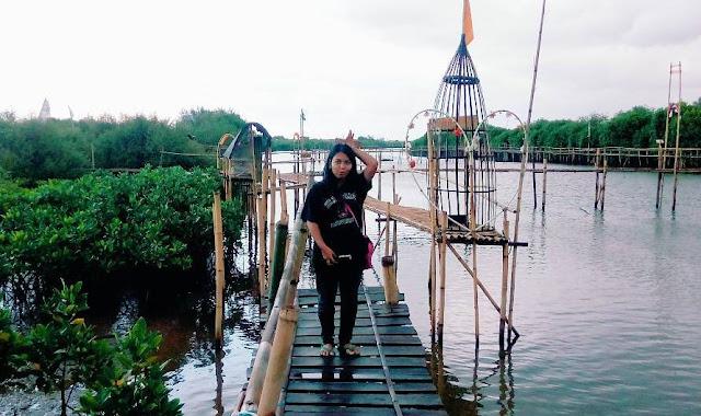 Haraga Tiket Masuk Tempat Wisata Hutan Mangrove Kulon Progo