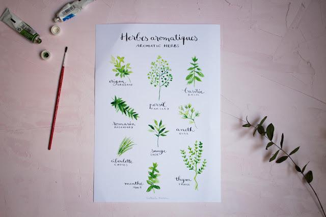ilustraciones de nathalie ouederni