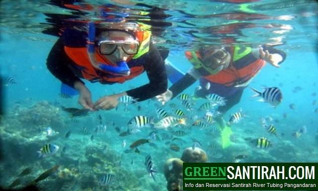Paket Wisata Snorkeling Pangandaran