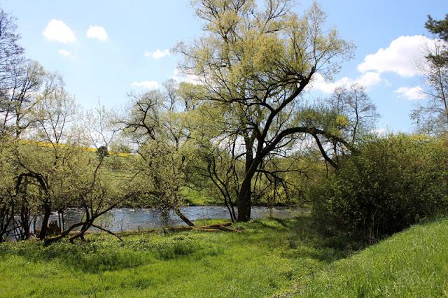 Flusslauf der Werra mit Bäumen und Sträuchern