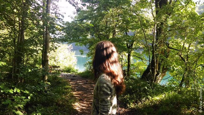 Волшебный парк Биоградска Гора, Черногория