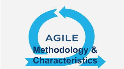 Agile Methodology and its Characteristics