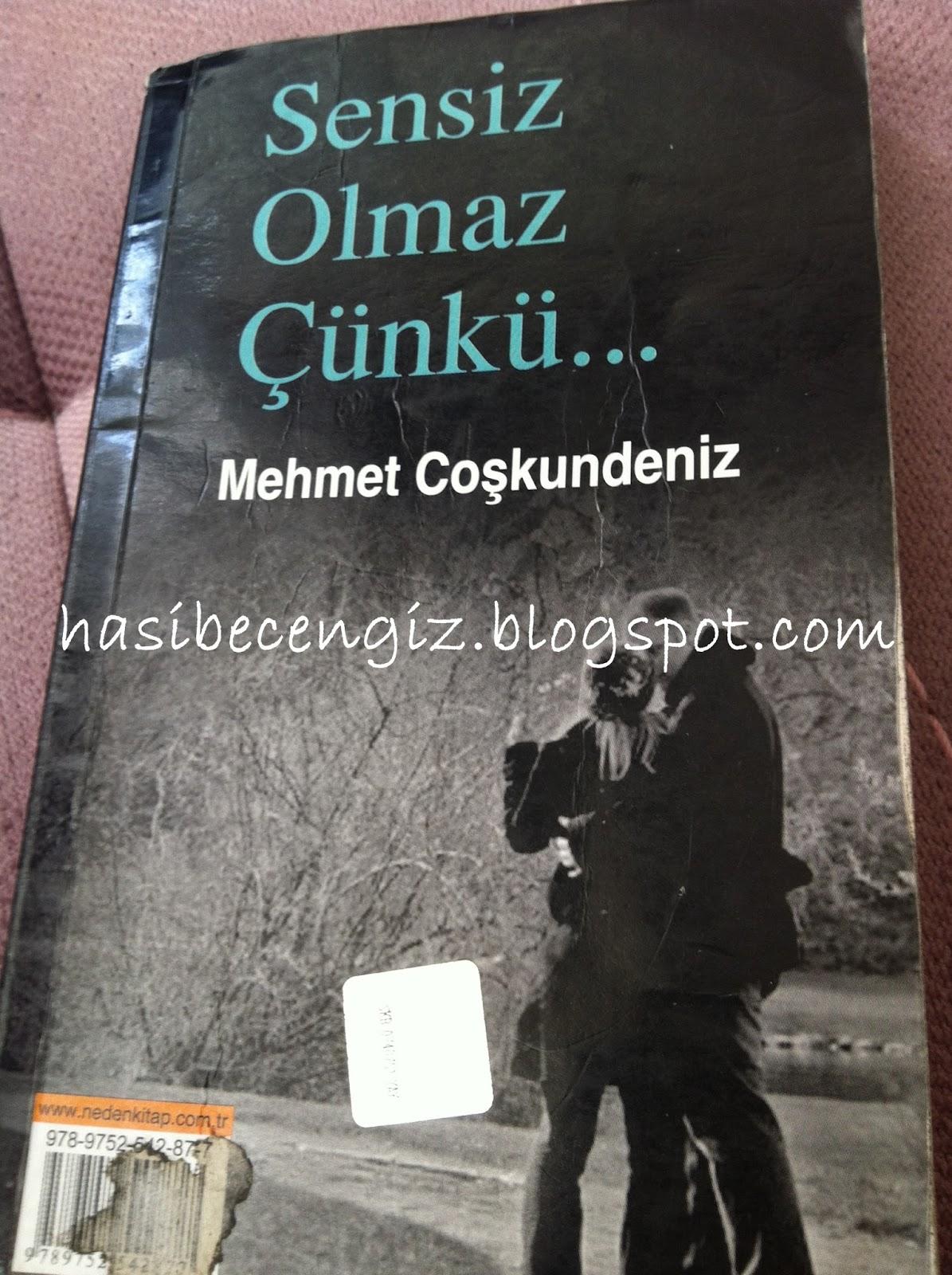 Mehmet Coşkundeniz Seni İstiyorum, Şimdi