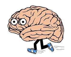 http://4.bp.blogspot.com/-YAWJzx0BBgs/T0O7TC3KQsI/AAAAAAAAC9Q/mTEMoQ4b92E/s1600/cervello.jpg