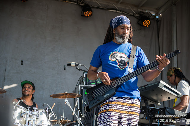 Tiken Jah Fakoly at NXNE 2016 at The Portlands in Toronto June 17, 2016 Photo by Roy Cohen for One In Ten Words oneintenwords.com toronto indie alternative live music blog concert photography pictures