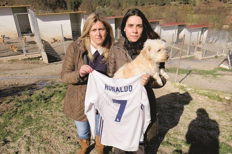 Cristiano Ronaldo ayuda a 80 perros abandonados donando una camiseta firmada