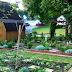 Home Garden Basics