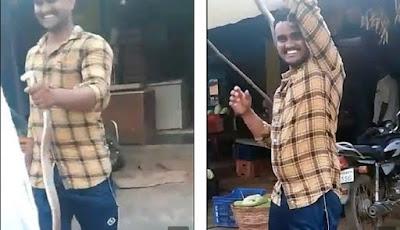 Pria meninggal dunia digigit ular kobra