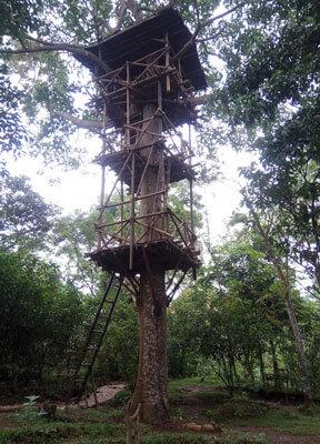 Rumah Pohon Taman Kupu Kupu Gita Persada