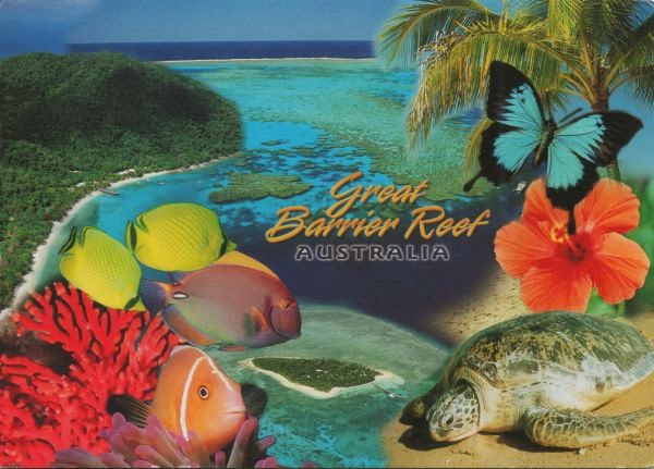 Great Barrier Reef with aerial view, fish, coral, hibiscus, butterfly, turtle