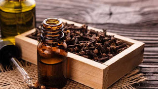 clove oil for treating gum problem