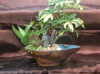Landscape plant tray ahmedabad