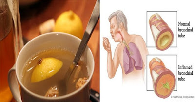 The 3 Ingredient Elixir That Can Clear Mucus From The Lungs And Strengthens The Immune System