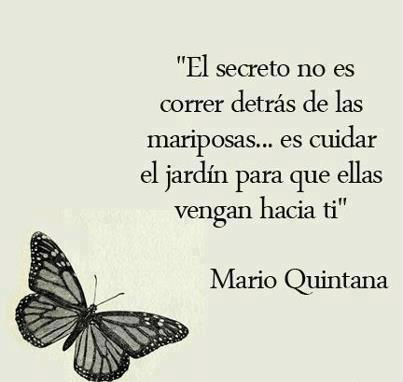 Frases El Secreto No Es Correr Detrás De La Mariposas
