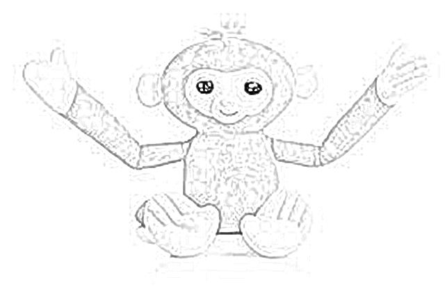 pygmy marmoset coloring pages - photo#42