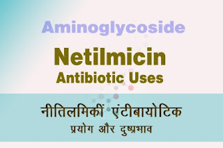 Netilmicin uses नीतिलमिकीं
