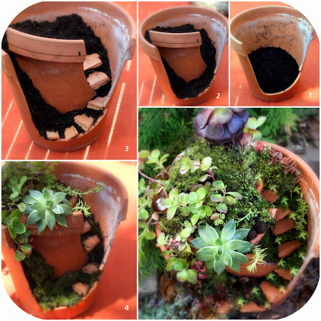 Fairy Garden Clay Pot: Daily Colours : DIY Fairy Gardening With Succulents
