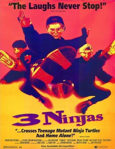 Ver Tres pequeños ninjas (1992) Online