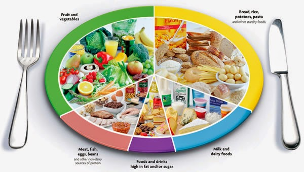 The Healthy Eating Plate And Pyamid