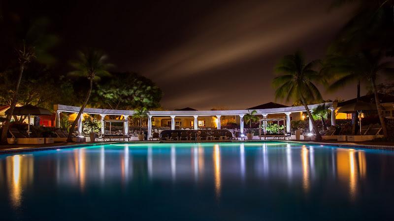Night Swimming HD