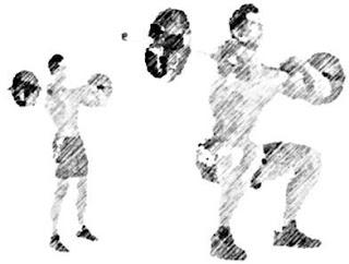 muscler-dos-squat