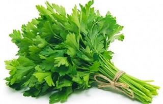 manfaat daun seledri untuk memncuci batu ginjal