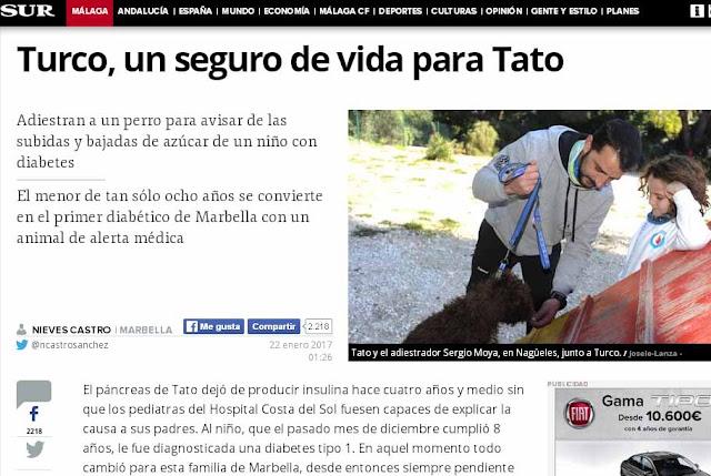 Un perro detecta las subidas y bajadas de azúcar de un niño diabético