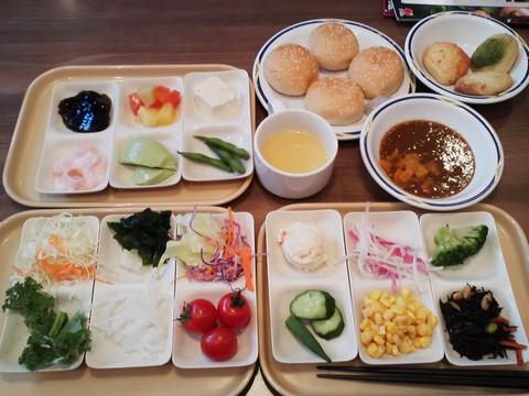 健康サラダバーランチ¥647-1 ステーキガスト一宮尾西店2回目