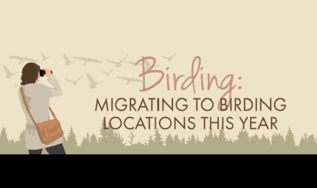 Birding: Migrating to Birding Locations This Year
