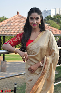 Angana Roy in Silk Saree at Teaching Tree Carnival .xyz 017.JPG