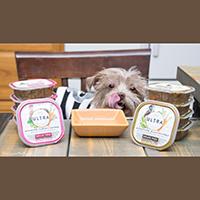 Nutro Ultra Filets in Gravy Wet Dog Food review