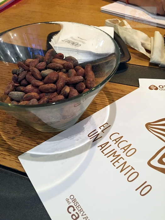 cacao-alimento-103
