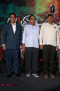 Aakatayi Telugu Movie First Look Launch Stills  0006.jpg