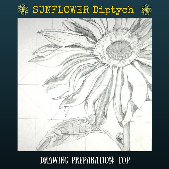 Drawing preparation for TOP Sunflower Diptych
