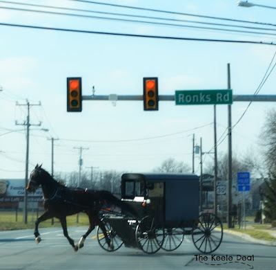 Amish Horse and Buggy in motion at a light in Bird-in-Hand, PA
