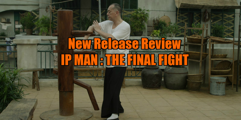 ip man the final fight film review