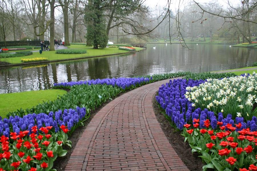 Holanda en flor jardines de keufenhof viajar sin - Paisajes y jardines ...