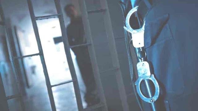 """Raide na cadeia do Linhó """"caça"""" droga, álcool e telemóveis"""