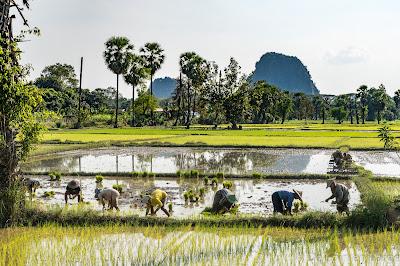 Hpa An-Myanmar-Birmanie