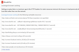How to troubleshoot a Leverage Browser Caching After Check in PageSpeed Insight
