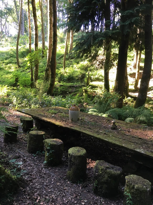 Bemooster Tisch in Hunting Brook Gardens