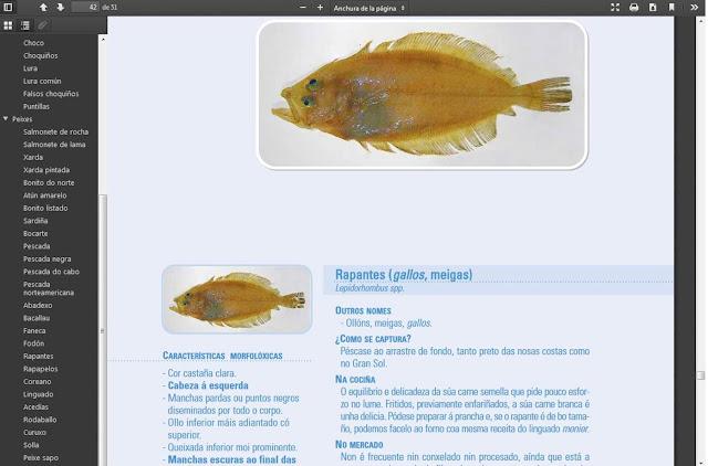 https://www.pescadegalicia.gal/Publicaciones/pdfs/Especies_pesqueiras.pdf
