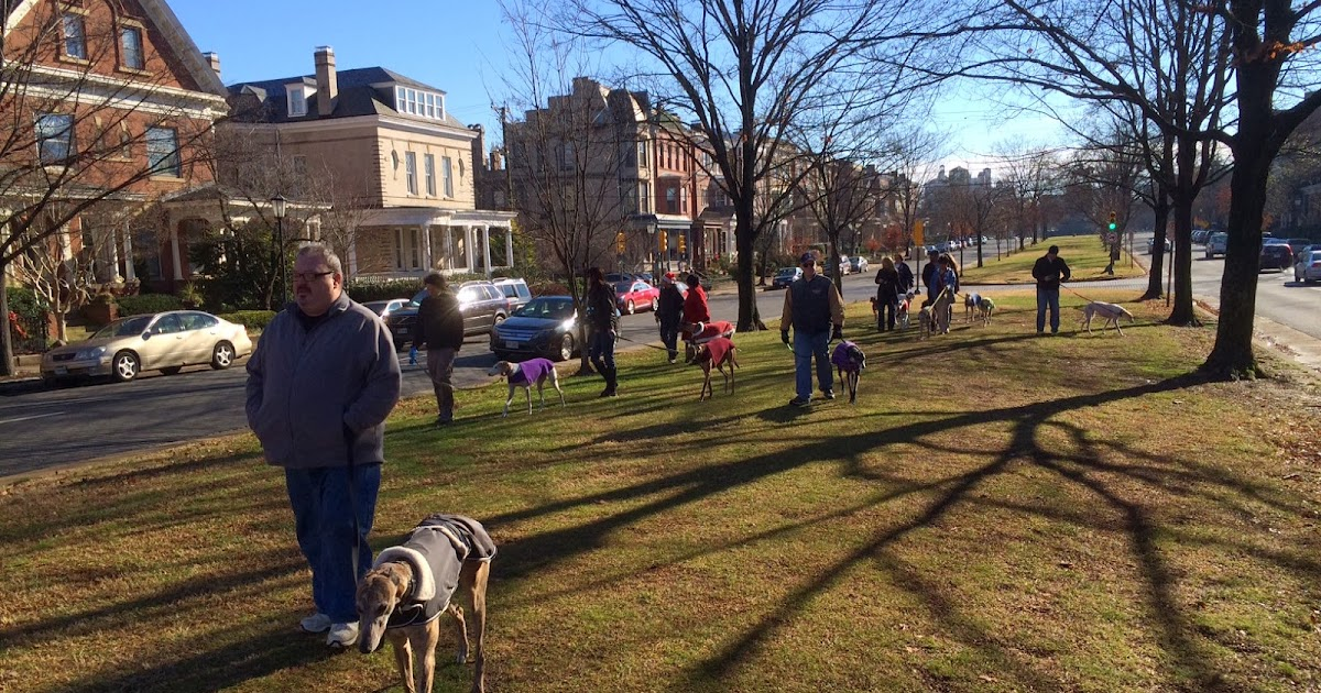 Pawstcards From Hampton Roads Monument Avenue Richmond Va