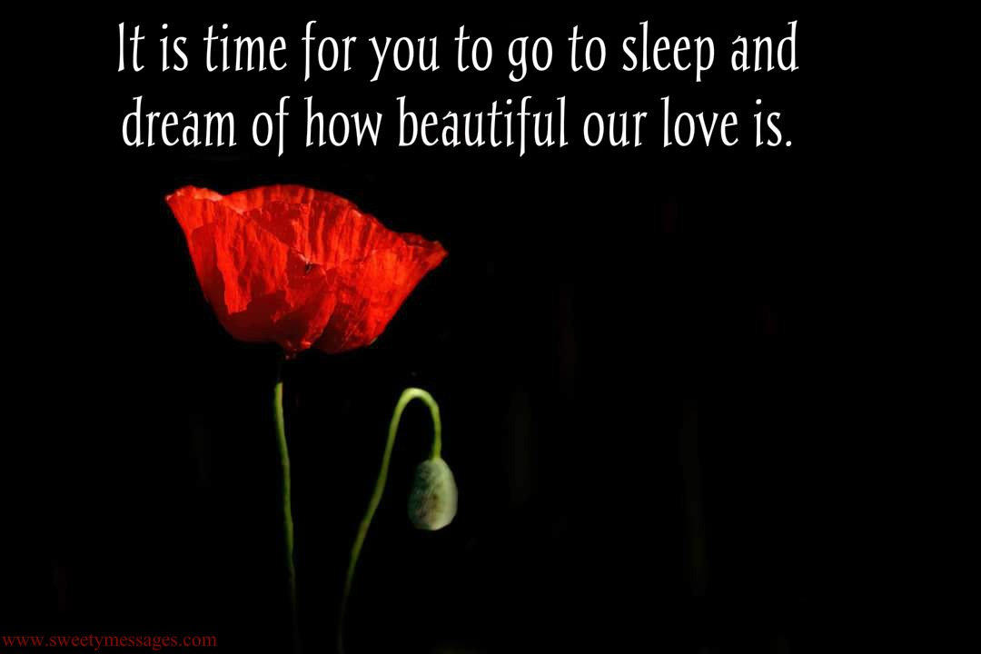 It is time for you to go to sleep and dream of how beautiful our love ...