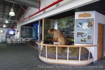 Juneau Macaulay Salmon Hatchery, 朱諾三文魚場
