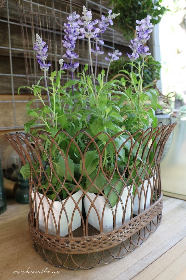 French gardener gift guide includes French wire baskets for flowers and linens