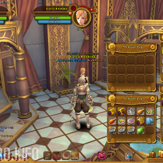 How To Change One Of Your Bags In Ragnarok Online 2